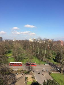 park-view-from-vincent-place