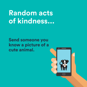 send someone a picture of a cute animal