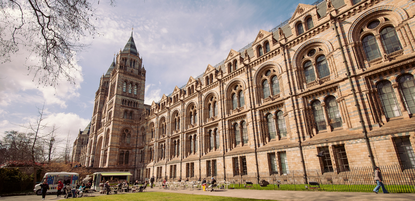 Free London Museums Natural History Museum