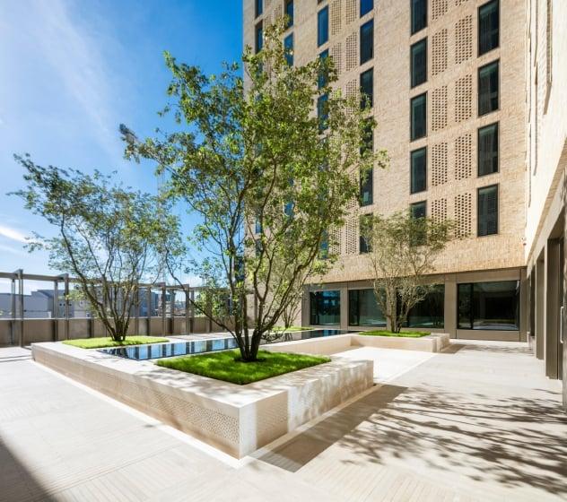 host-accommodation-summer-garden-view