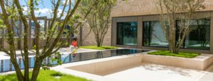 host-summer-accommodation-garden