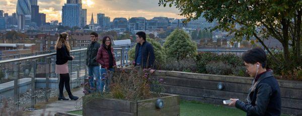 Host The Hive terrace in London
