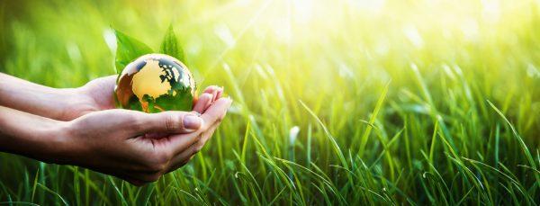 Environmental Pledge charity