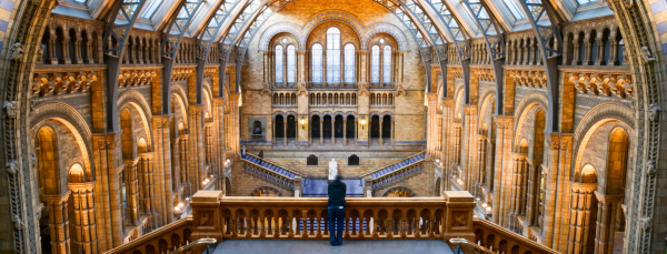 10 Free museums in London
