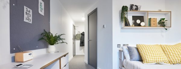 Best reasons to add greenery to your student home header image